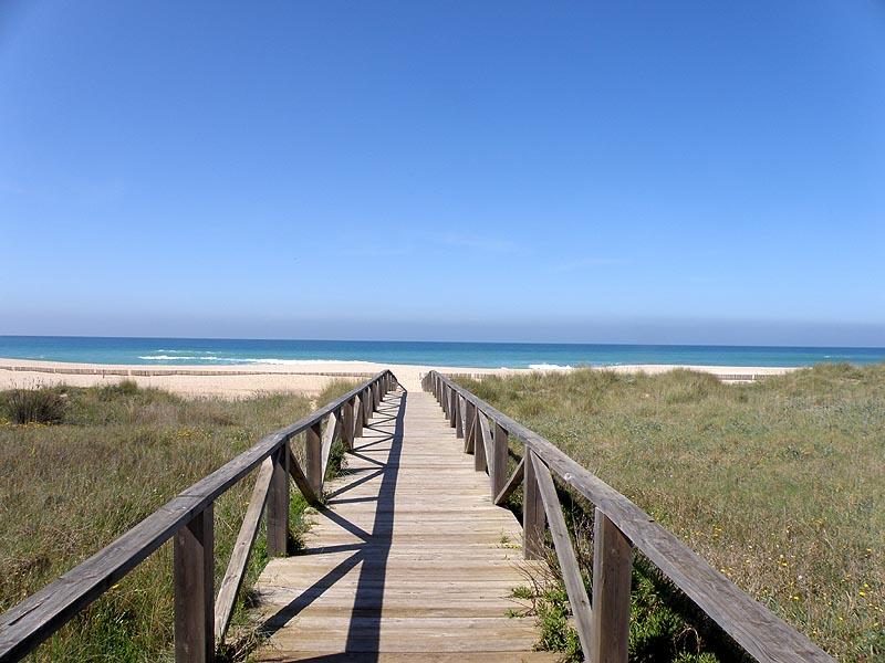 Caba as rurales el palmar en for Camping jardin de las dunas tarifa